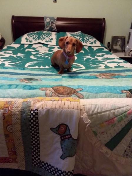 Deanna's Bedspread